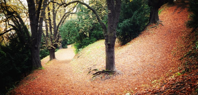 Photo couleur de l'automne à Prague, République Tchèque