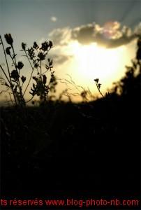 Coucher de soleil sur les Mont d'Or - la nature au coeur !