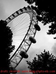 La Grande roue de Londres