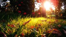 Photo couleur d'un soir d'été en Haute Saône