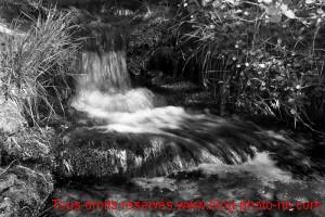 Ruisseau le Malbuisson, proche de Villevocance - Ardèche