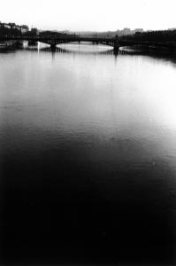 Pont de l'université - Lyon (69)